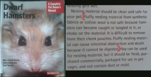 Dwarf hamster book fluffy bedding dangers