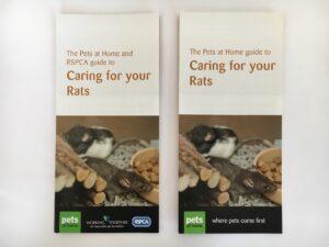 Pets at Home RSPCA Leaflet Rats