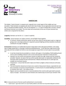 Royal vetenary college warning against fluffy bedding for hamsters